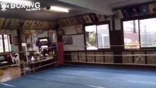 【ボクシング】だいごのジム訪問ヨネクラジム 2016/08/25