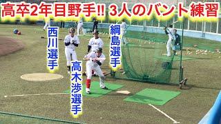 2019年2月 西武ライオンズ春野キャンプ 高卒2年目野手3人のバント練習 ...