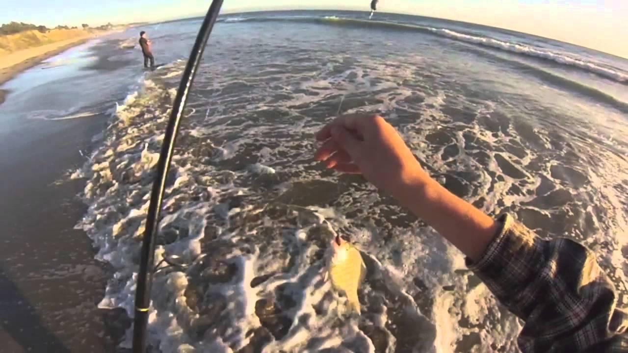 8 1 13 surf fishing in santa cruz ca youtube for Santa cruz fishing report