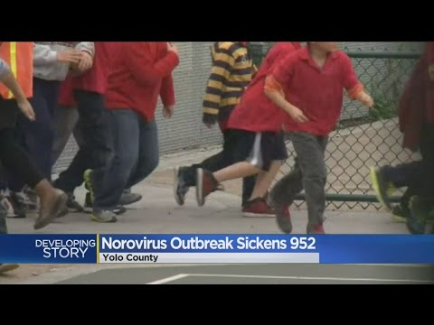 Norovirus Spreads Throughout Yolo County School Districts