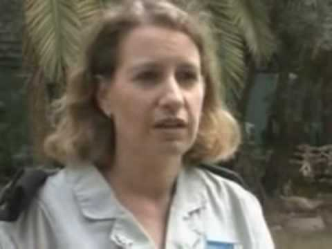 Israeli Soldiers admit WAR CRIMES in Gaza (inc Interview with Major Avital Leibovich)