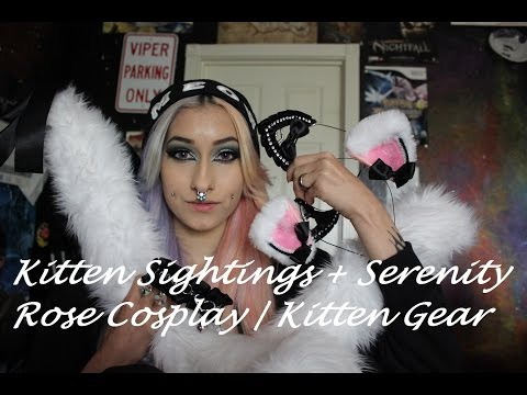 Kitten Sightings + Serenity Rose Cosplay | Kitten Gear from YouTube · Duration:  9 minutes 39 seconds
