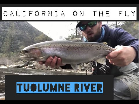 CALIFORNIA ON THE FLY: TUOLUMNE RIVER