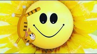 С Добрым утром!Удачного дня!Волшебного вечера!Хорошего настроения!  музыкальная открытка для друзей!