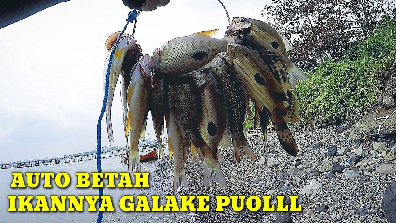Diluar Tambak Ikannya Lebih Galak