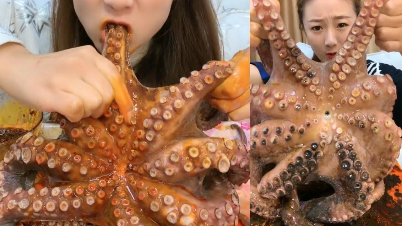Mukbang Giant Octopus   Mukbang Seafood Huge Octopus in China