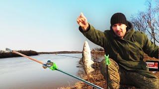 В этом месте всегда много рыбы Рыбалка на красноперку весной