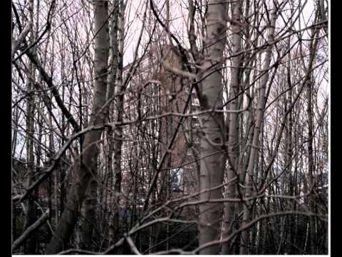 Paul Seawright- Everywhere and Nowhere Symposium