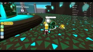 Roblox Pet Simulator, passing to last level
