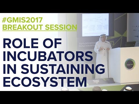 The Role of Incubators in Sustaining the Ecosystem - GMIS 2017 Day 1