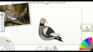 Digital Drawing - 2 Turtle Doves