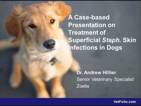 A Case Based Presentation On Treatment Of Staph Skin