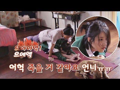 """효리쌤 스파르타 요가에 만신창이 아이유 """"꺄아아악!!ㅠㅠ"""" 효리네 민박 6회"""