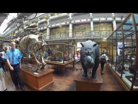 1.08.2017 Tuesday Natural History Museum Dublin