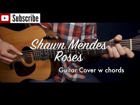 Shawn Mendes - Roses guitar cover (w TAB)/guitar (lesson/tutorial) w ...