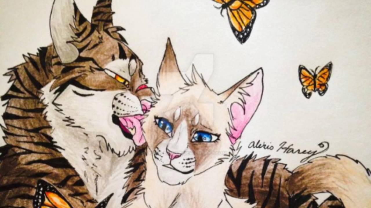 Tigerstar: Heart of Evil? | Warriors Wiki | Fandom powered by Wikia