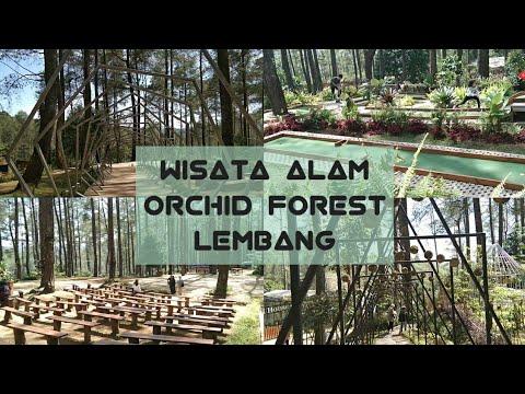 orchid-forest-cikole-||-wisata-alam-bandung-||-wisata-lembang