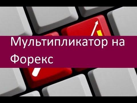 Мультипликатор на Форекс  Особенности применение
