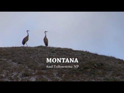 MTBOB.COM - 2016, Montana and Yellowstone - Adventures with Montana Bob