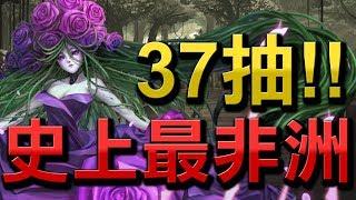 【Hsu】『荊棘花園』37+1抽!大獎會灑花!史上最非洲的一次!