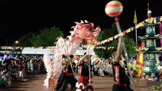 DRAGON DANCE Đón Chào Xuân Mậu Tuất 2018