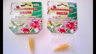 ЦИТОКИНИНОВАЯ ПАСТА - средство для цветения и размножения любых растений