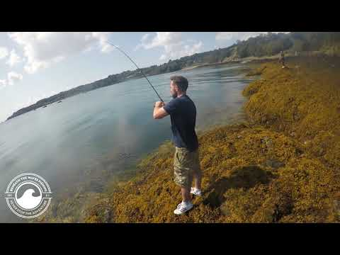 Back On The Bass | Fishing Jersey Channel Islands | Test