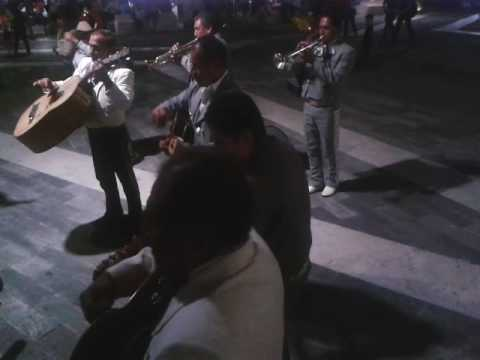 Celebremos con gusto mariachi Real san diego