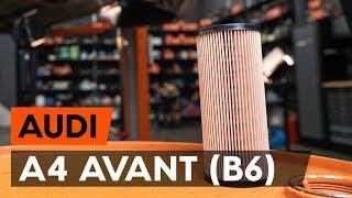 AUDI A4 Avant (8E5, B6) Öljynsuodatin asennus : ilmainen video