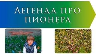 Легенда про пионера | Василий Сухомлинский | Рассказы о войне
