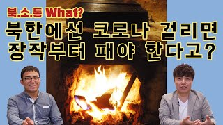 [북소통] 북한 사람들은 코로나를 두려워하지 않는다? |북한의 코로나 상황, 북한의 의료시스템