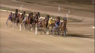 Vidéo de la course PMU PREMI TINTIN DE S'HORT