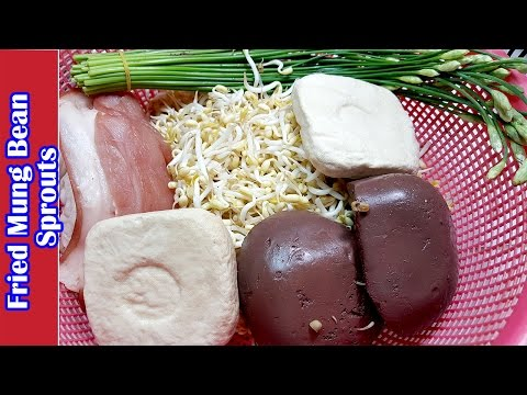asian-food,-khmer-cooking-recipes,-fried-mung-bean-sprouts,-home-food-factory