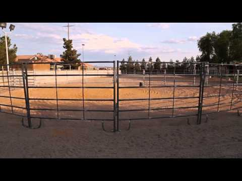 Horse Property in Las Vegas For Sale | 5375 W. Shelbourne Avenue, Las Vegas NV  89139