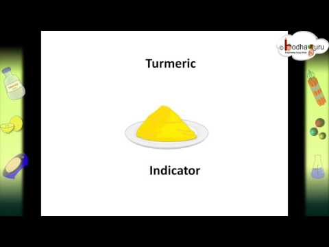 Science - What Are Acid-Base Indicators And How Indicators Works  - Hindi