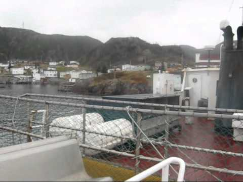 Rencontre east newfoundland