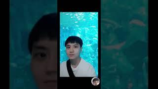 롯데월드 아쿠아리움 Lotte World Aquariu…