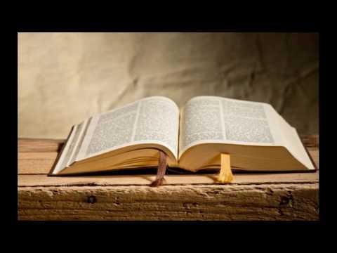 """""""Um livro de milagres"""", diz idoso de 80 anos que copia a"""