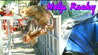 OMG, baby poor Rocky  playing fun with Rosana but Rocky clingless down to the bottom so pity.#96