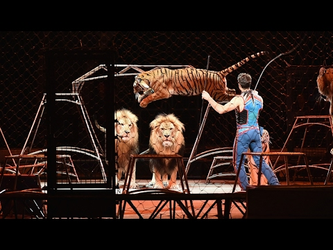 Ringling Bros Circus To Perform Final Show