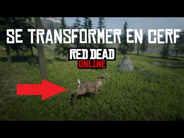 [GUIDE] Se transformer en cerf dans Red Dead Online avec les plantes Harrietum Officinalis