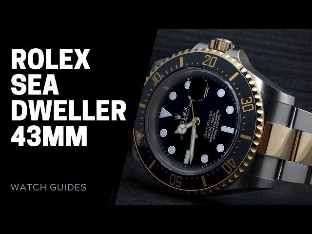 Rolex Sea Dweller 43mm Guide 126600 126603 | SwissWatchExpo