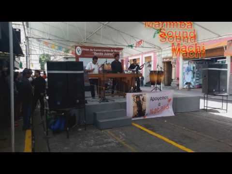 Marimba sound machine   Alegre Juventud