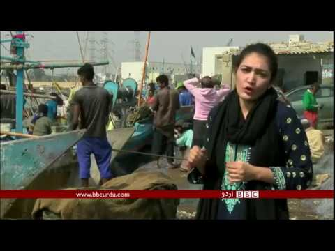 Worst form of child labor at fisheries: Shumaila Khan reports from Karachi