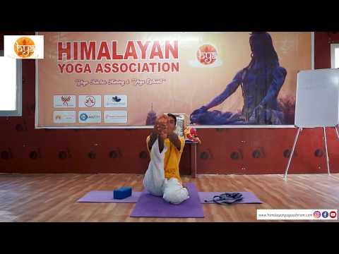 How to Do #Krounchasana | #Heron #Pose? | Benefits | Contraindications | Himalayan Yoga Association