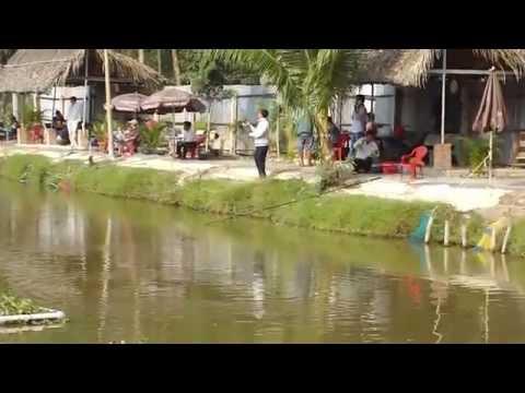 Hồ Câu Cá Giải Trí Vĩnh Lộc Hồ câu cá nàng hai, Hồ câu cá lóc