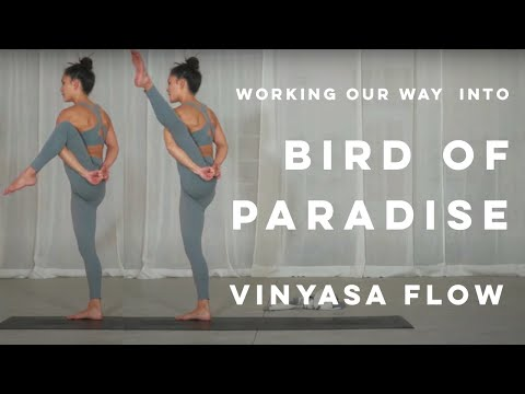 50 Minute Intermediate Vinyasa Flow Yoga - Bird of Paradise 2021