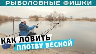 Как ловить плотву весной? С прикормкой или без? Рыболовные фишки!