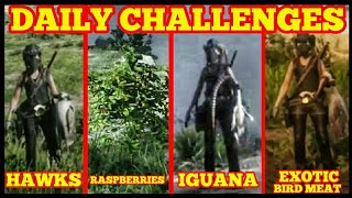 Daily Challenges HAWKS EXOTIC BIRD MEAT RASPBERRIES IGUANA Red Dead Online