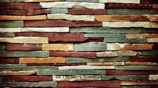 Download Devil House 2007 - 01. I'm Sorry Goodbye